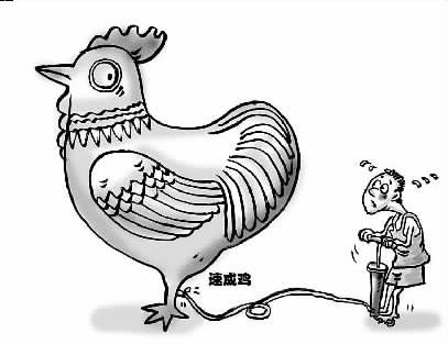 大学生超萌可爱动物简笔画